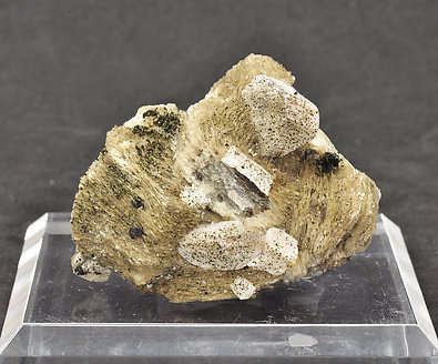Greifensteinite with Muscovite and Feldspar